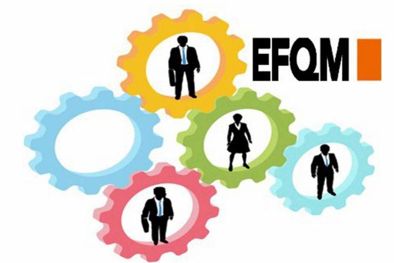 EFQM اصول بنیادین تعالی سازمانی چیست ؟