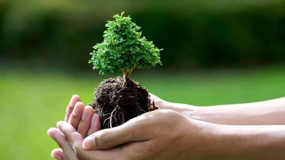 حامی محیط زیست